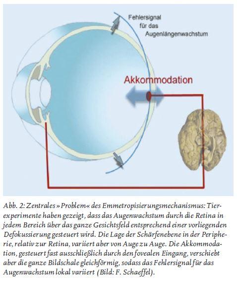 Abb. 2 Silke Lohrengel